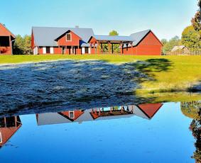 Kaimo turizmo sodybos Druskininkuose nuoma