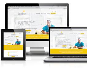 Profesionalus interneto svetainių /  E-parduotuvių kūrimas