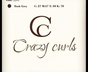Logotipų dizainas. Firminė atributika