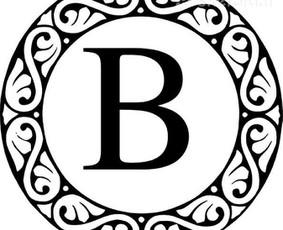 Accounting services / Buhalterio paslaugos 8 603 155 74