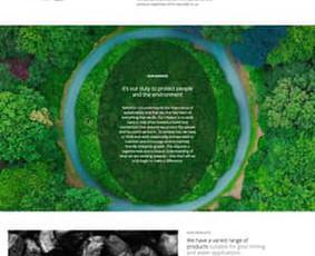 Interneto puslapių kūrimas   Skaitmeniniai sprendimai