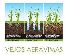 AERAVIMAS / VEJOS ĮRENGIMAS IR PRIEŽIŪRA / ALPINARIUMAI
