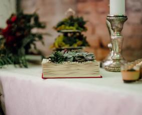 Wedding Dream - Tatjana Vasičkina, vestuvių planuotoja