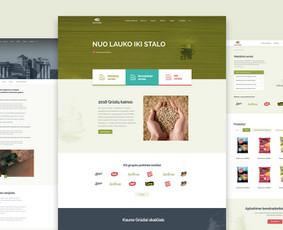 WEB/UI/UX dizaineris Kaune