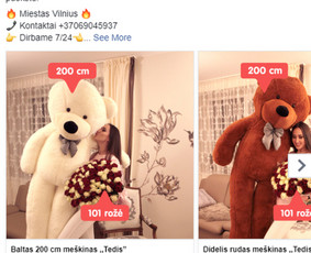 Facebook Reklama: Kūrimas + Optimizavimas