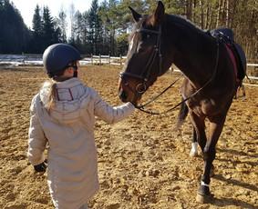 Jojimo treniruotės, žirgų ir karietos nuoma fotosesijoms