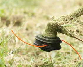 Žolės pjovimo paslaugos.