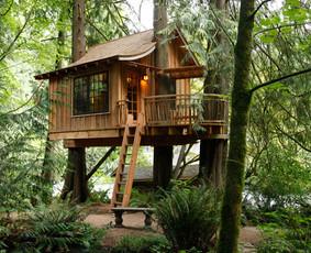 Nameliai medyje/ žaidimo aikštelės