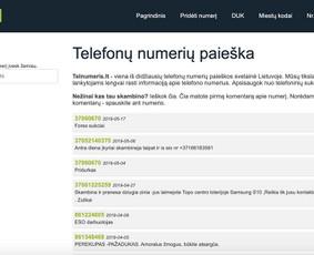 Programuotojas Vilniuje