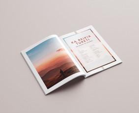 Profesionalios grafikos dizainerio paslaugos (print   web)