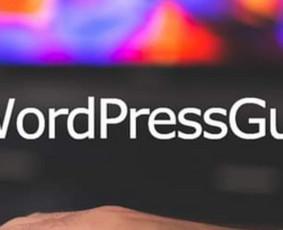 WordPress internetinių svetainių ir parduotuvių kūrimas