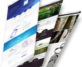 Interneto svetainių dizaineris