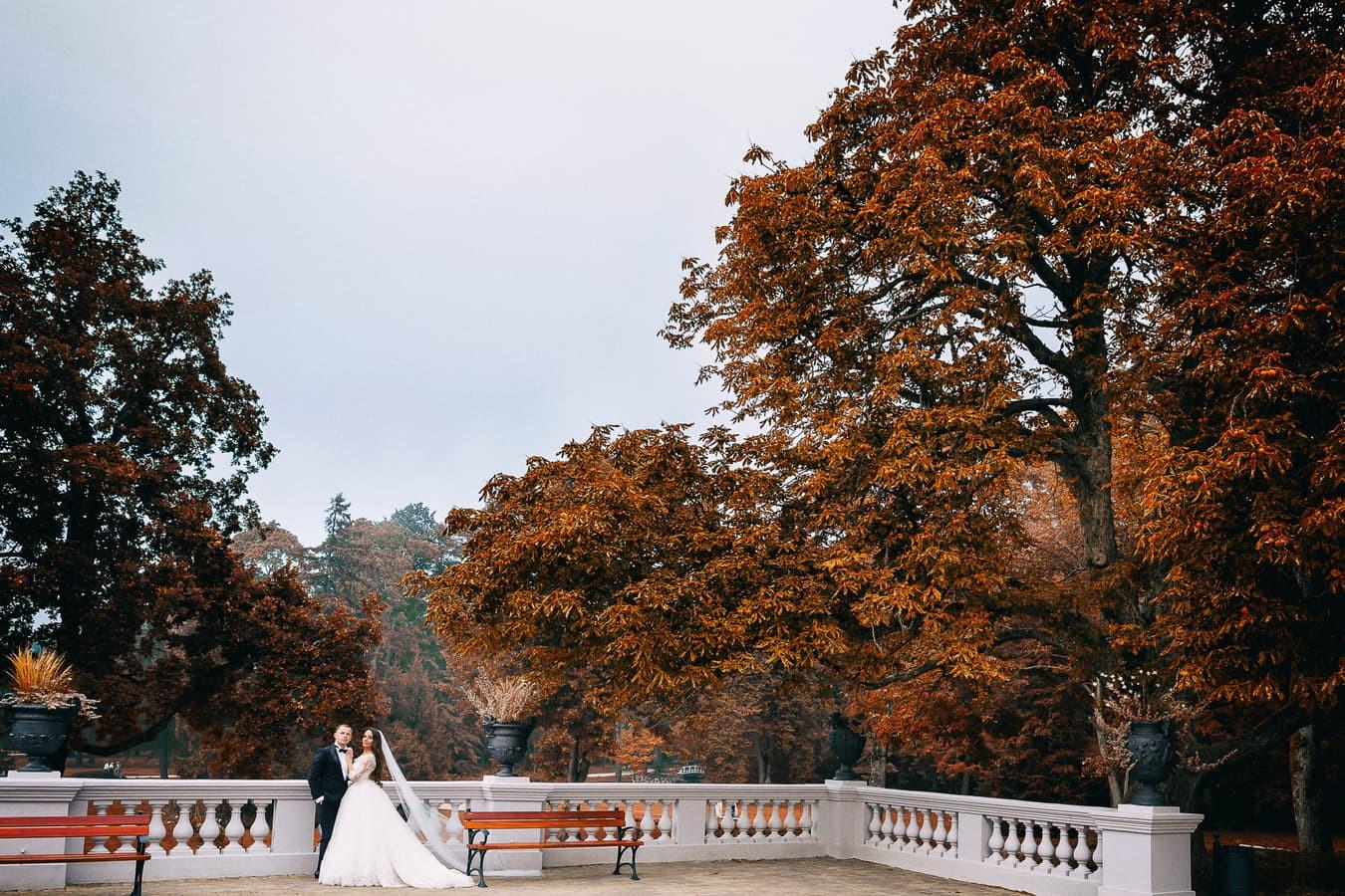 Vestuvių fotografavimas Palangos Gintaro muziejaus parke