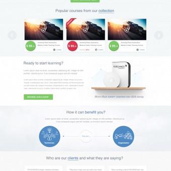 FLTechnics pradinio puslapio ir vartotojų sąsajos (UI) dizainas