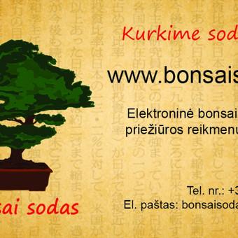 Bonsai medeliai / Bonsai medeliai Kęstutis / Darbų pavyzdys ID 11196