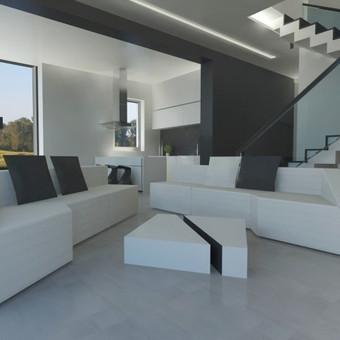 Dviejų aukštų gyvenamojo namo interjero projektas.