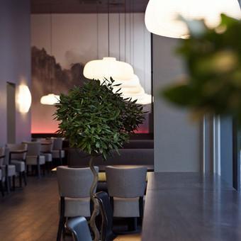 MIYAKO japonų restoranas Vilniuje, Mindaugo g. 25 Daugiau www.cadmonkeys.lt