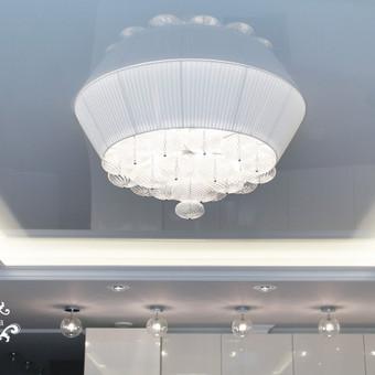 Svetainėje yra keturių rūšių apšvietimas. Kiekvienas iš jų valdomas atskirai. Virtuvės zona atkirta penkiais virštinkiniais šviestuvėliais. Jie pratesia koridoriaus  šviestuvų idėją. Taip sukuriamas vientisumas.