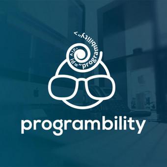 Interneto svetainių kūrimas. www.programbility.com