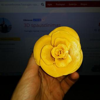 3D Spausdinimas / Viktoras / Darbų pavyzdys ID 30965