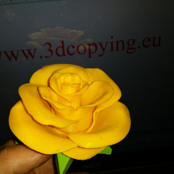 3D Spausdinimas / Viktoras / Darbų pavyzdys ID 30966