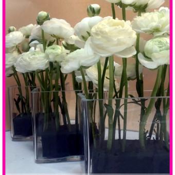 Floristas, gėlių salonas / Olga / Darbų pavyzdys ID 33704