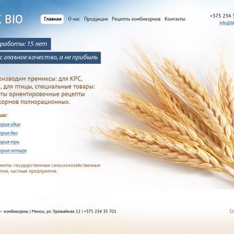 Baltarusų premiksų ir sorbentų gamintojo svetainė