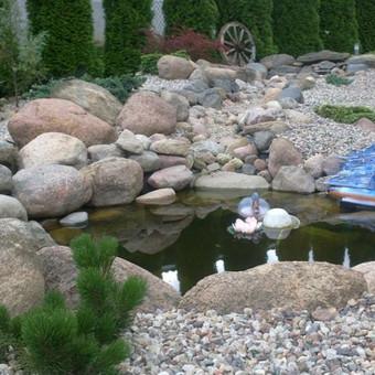 Apželdinimas dekoratyviniai baseinai / Donatas Vozbinas / Darbų pavyzdys ID 42548