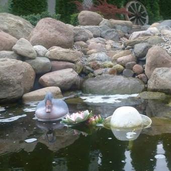 Apželdinimas dekoratyviniai baseinai / Donatas Vozbinas / Darbų pavyzdys ID 45396