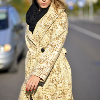 Vilnos paltukas