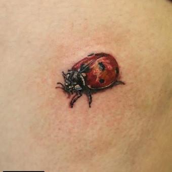 Tatuiruotės, tatuiruočių salonas / Ernesta / Darbų pavyzdys ID 53181