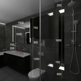 vonios kambario koncepcinis pasiulymas.