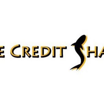 Kreditų agentūros logo, JAV