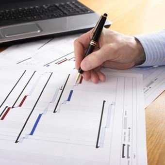 Projektų ir dokumentų rengėjas / Almas Rupšlaukis / Darbų pavyzdys ID 385971