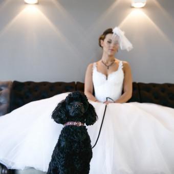 Svarbu - detalės. Juodų elegantiškų vestuvių akcentas - Juodas Pudelis
