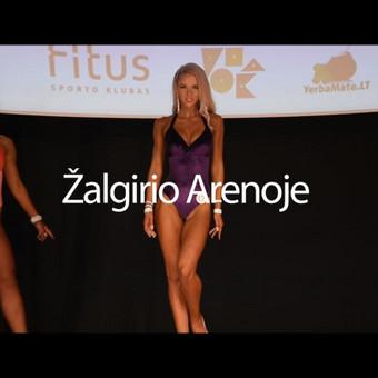 . Video / Marek Germanovich / Darbų pavyzdys ID 415887