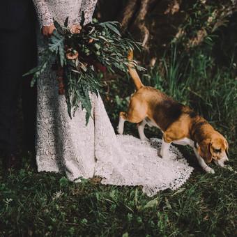 Profesionali vestuvių-meilės fotografija / Reda Jokymaitytė / Darbų pavyzdys ID 433055