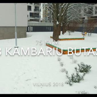 Interjero dizaineris Visoje Lietuvoje / Georgij Greben / Darbų pavyzdys ID 446667