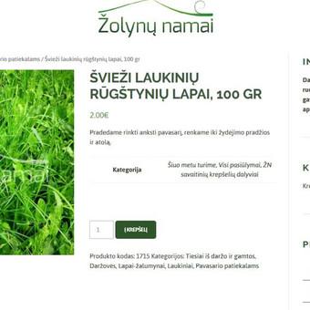 Kokybiški tinklalapiai ir e-parduotuvės / Linas Gudaitis-Rūkas / Darbų pavyzdys ID 450303