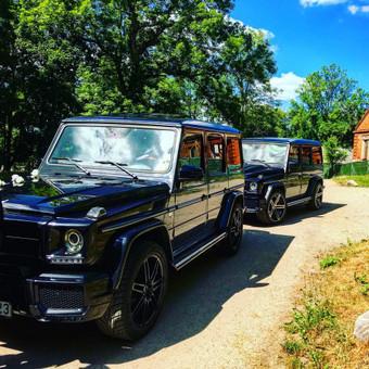 Automobilių nuoma / Александр ЕГОШИН / Darbų pavyzdys ID 453561