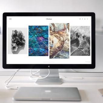 Vitalij Michno. Wordpress svetainių kūrimo kaina nuo 250€ / Vitalij Michno / Darbų pavyzdys ID 459353