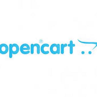 Open cart kūrimas