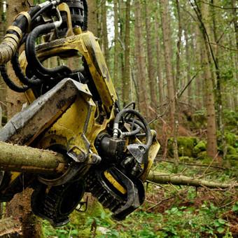 Forest-machines.lt projektui