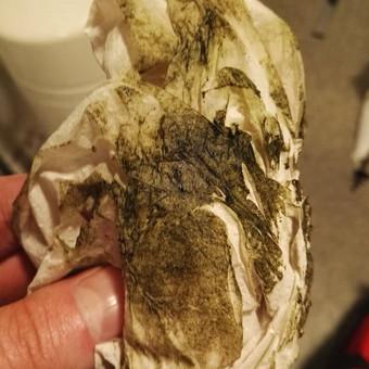 Kasetinis filtras sumontuotas šviesioje vietoje, ilgai nekeisti elementai. Rezultatas: nepageidaujamas kvapas ir augmenija korpusų viduje.