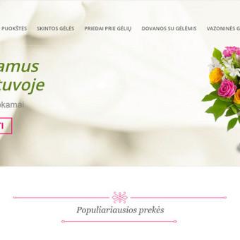 Internetinių svetainių kūrimas / Živilė Karaliūnienė / Darbų pavyzdys ID 474027