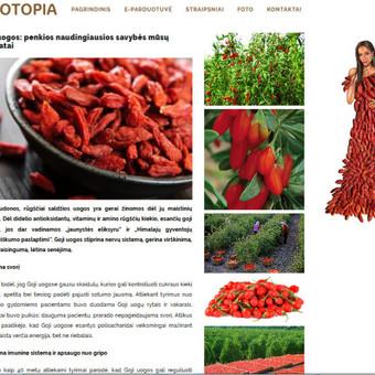 Straipsnių, tekstų svetainėms, reklamai rašymas / Monika Žiūkaitė / Darbų pavyzdys ID 482039