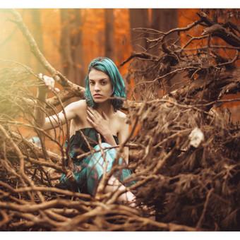 Fotografas / Saugirdas Gumbis / Darbų pavyzdys ID 482107