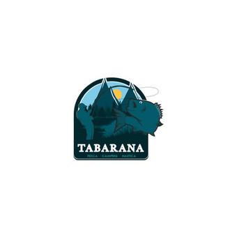 Logotipų kūrimas bei grafikos dizaino paslaugos / Valery Kitkevich / Darbų pavyzdys ID 489713