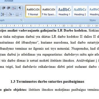 Konsultavimas rengiant rašto darbus / Gerda / Darbų pavyzdys ID 490069