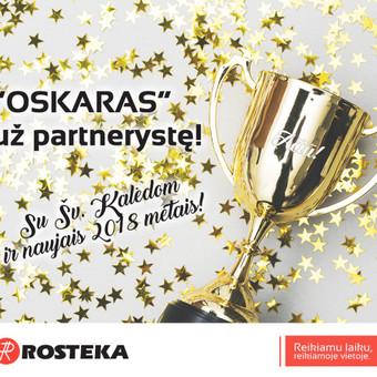 Laisvai samdoma marketingo specialistė/projektų vadovė / Renata Janulevičienė / Darbų pavyzdys ID 497149
